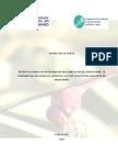 Dissertação Daniel Veras (versão final_revisado).pdf