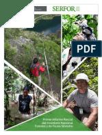 Primer_Informe serfor bueno.pdf