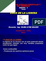 Qca.forest 08 (Usos de La Lignina)