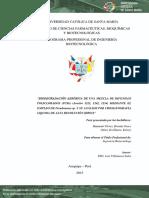 Biodegradacion de PCBs Por Pseudomonas y Su Analisis Por HPLC