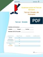 examendetercergradoejemplo-160202234357.docx