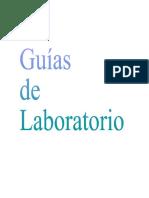 GUÍAS DE LABORATORIO
