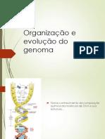 Organização Do Genoma