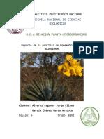 Reporte 1 Diversidad Vegetal Encb