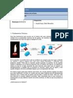 la llama de la vela Informe de Laboratorio