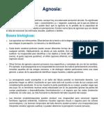 Agnosia Definicion y Bases Biologicas