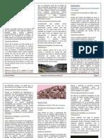Resumen Conferencias Habitat III