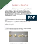 PARDEAMIENTO-NO-ENZIMÁTICO.docx