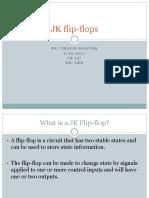 Travis JF Flip-flops