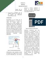 D P10 Difraccion