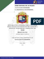 Meza_Castillo_Lizardo.pdf