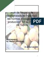 Nepthali Luna - DESHIDRATADO_FRUTA.pdf