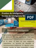 3. Inteligencia y Wechsler