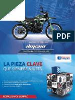Motocicleta DM200 ficha técnica