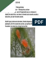 Vita de vie.pdf