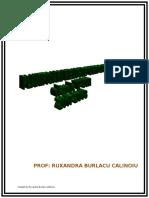 0_planificarigimnaziu_2017.doc