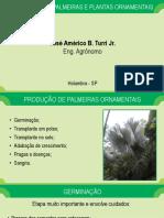 Aula 18 - Produção de Palmeiras e Plantas Ornamentais