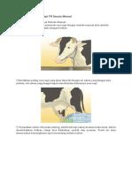 Cara Memerah Susu Sapi Secara Manual