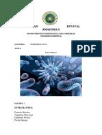 Bacterias Genralidades Estructura y Morfologia