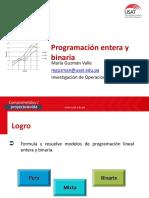 Programaciòn Lineal Entera y Binaria