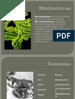 94994600-Micobacterias.pptx