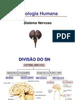 201797_155128_aula+5+sistema+nervoso+autônomo