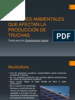 FACTORES AMBIENTALES QUE AFECTAN LA PRODUCCIÓN DE TRUCHAS.pptx