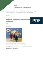 Proyecto Ciencias Con Flores y Colorante