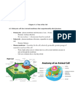 Cell Structure Function Review Presentation.docx