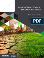 Eje Tres Pedagogia Ambiental