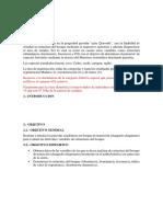 chinita ecologia estructura.docx