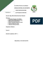 BOTANICA-INFORME (3).docx