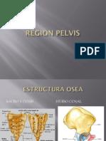 Región Pelvis