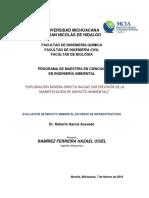 Revision MIA Particular Mineria