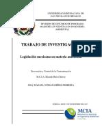 Ramírez Ferreira Hazael Ociel-lbogm y Su Reglamento
