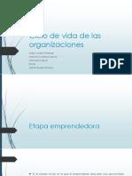 Ciclo de vida de las organizaciones (1).pptx
