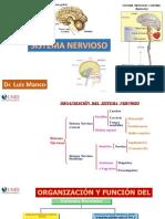 Clase 09 - Anatomia Del Snc Tema 1