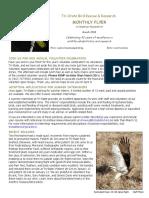 March 2018 Volunteer Flyer.pdf