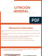 Nutrición Mineral
