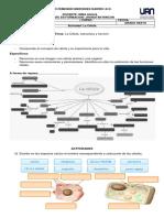 Activida Celula.pdf