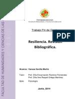 TFG_SevillaMartin,Vanesa.pdf