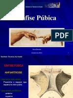 4-Sínfise Púbica (DEFINITIVO).PDF Mod. 2 Fds