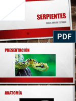 serpientes.pptx