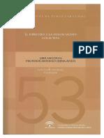 Monografias Num 53