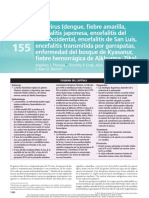 FLAVIVIRUS.pdf