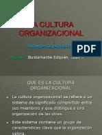 3313910-CULTURA-ORGANIZACIONAL.ppt