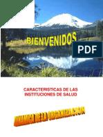 dinámicaycaracterísticasdelasintituciones de saludUNRN (2).ppt