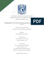 TESIS_Nadxiieli_Delgado.pdf