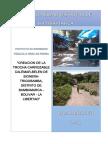 PIP camino vecinal Bambamarca.pdf