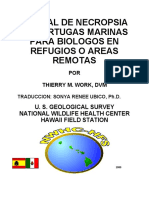 Turtle Manual Spanish